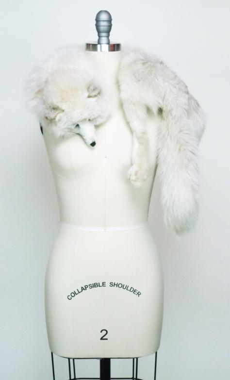 Arctic White Fox, Gossamer Gang, LLC 2016 (FBFS002F), back