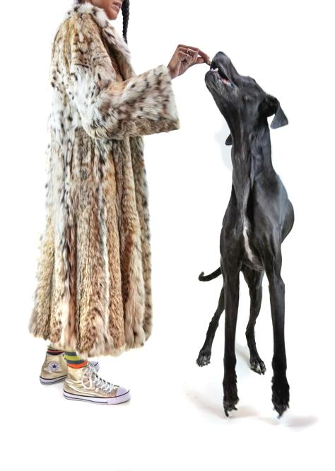 "Orphan V, Gossamer Gang, LLC 2016 (FRSWFL001). ""Lion 2016 - Savour"" Models: Joy Suzanne Grazer & Mona Spaghetti"